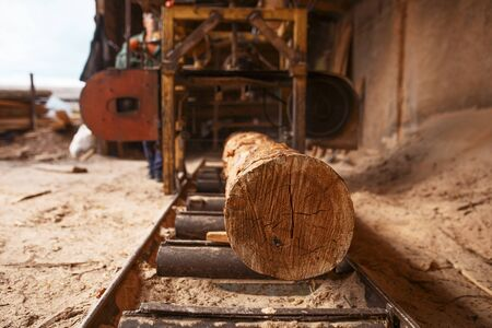 Log on woodworking machine, nobody, lumber industry, carpentry. Wood processing on factory, forest sawing in lumberyard, lumbering, sawmill