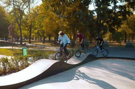 Three bmx riders on bikes, training in skatepark
