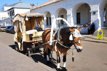 horse drawn carriage: Horse drawn carriage in Suzdal, Russia