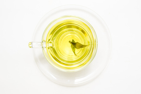 A cup of stevia tea herb isolated  photo