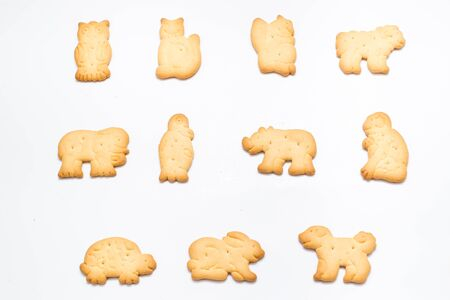 Animals biscuit  photo