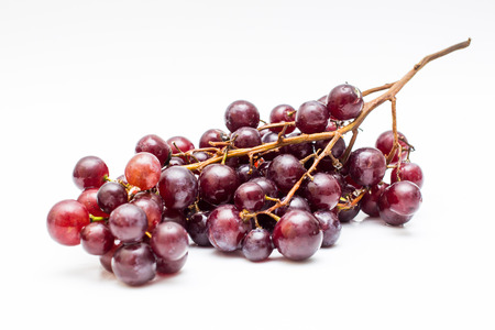 Grape in white background. photo