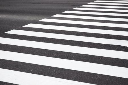 cebra: Cruz Zebra caminar en la carretera de asfalto. Foto de archivo