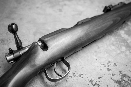 cz: .22 Cal long rifle close up in BW Colour tone.