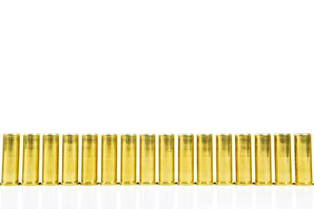 Image of .38 Cal isolated.