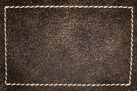 leather skin: Leather skin background. Stock Photo