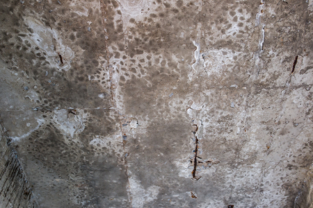 Aged concrete ceiling fully with fungal on surface close up background. Stock Photo