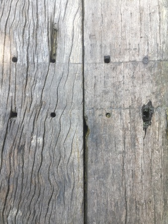 Sleeper wood Texture