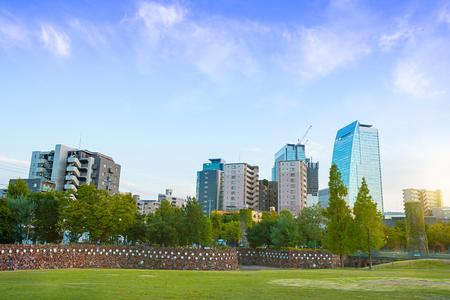 晴れた日に、日本で中央公園。
