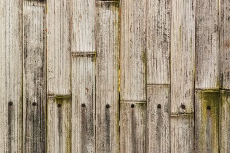 bamboo texture: Old bamboo texture background. Stock Photo