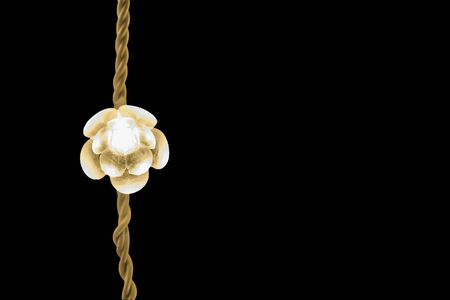 luminaire: Christmas LED lights in the form of flowers. Stock Photo