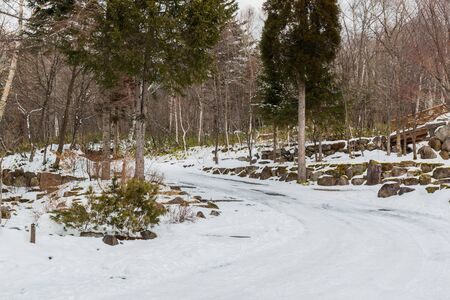 space weather tire: Road curve in forest, covered with snow in winter.