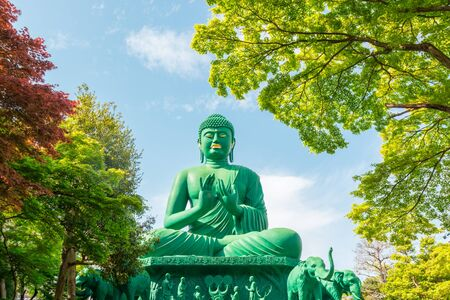 ism: The great Buddha of Nagoya with tranquil place in green forest.
