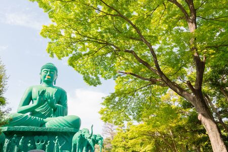 credo: The great Buddha of Nagoya with tranquil place in green forest.