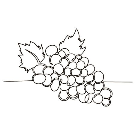 A bunch of grapes berries drawn in one line by hand