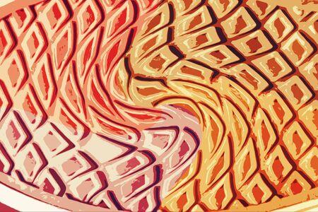 color key: Colorful floor shoes texture