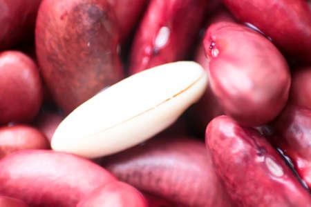 frijoles rojos: Alimento de la nutrición natural Frijoles Rojos