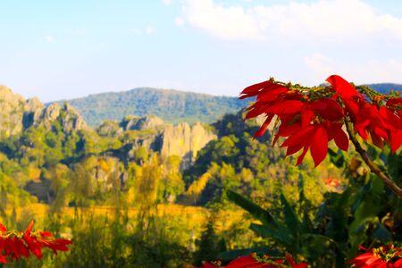 loei: Suan Hin Pha Ngam mountain Loei Thailand