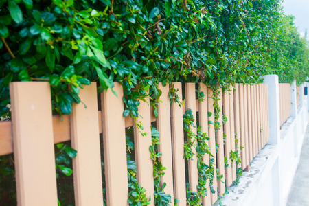 County style long wooden fence