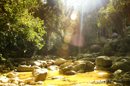 Waterfall in tropical forest rock floor Archivio Fotografico - 110441486