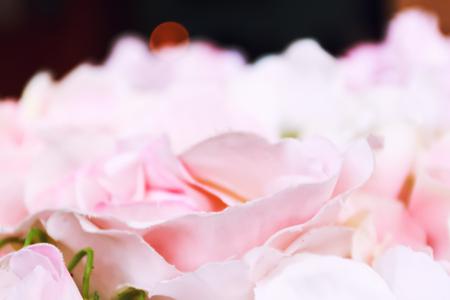 pink rose flower decorate wedding background Archivio Fotografico - 121910771