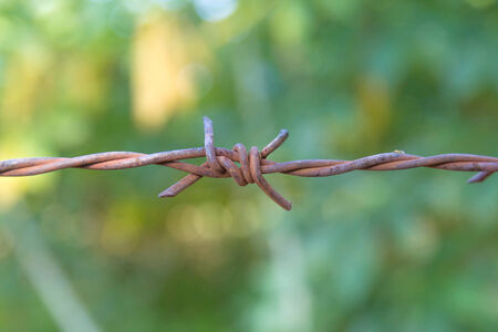 Close up of barbed wire with vintage look photo