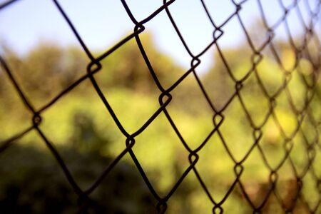 wire fence: wire fence