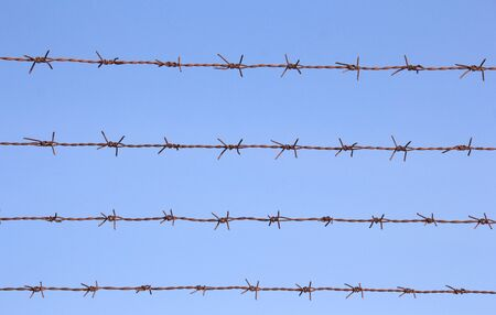 barbed wire frame: Barbed Wire with blue sky