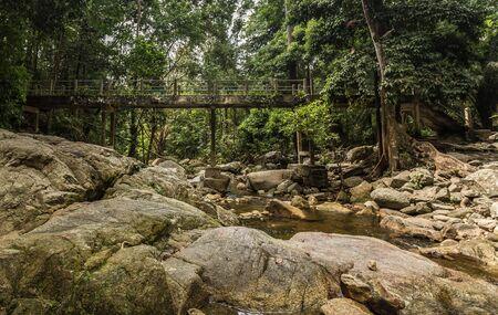 furrow: The cement bridge in the jungle
