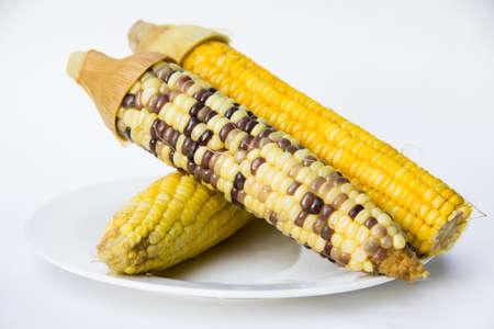 sweetcorn: sweetcorn on white plate