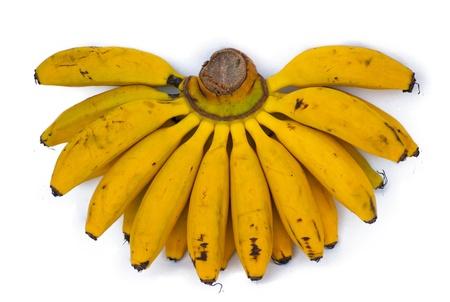 Banana photo