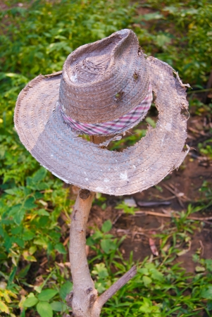 Shabby hat  photo