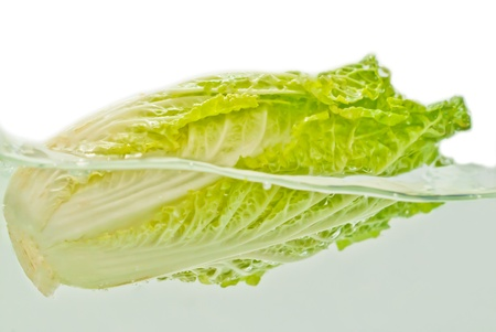Lettuce on a white background photo