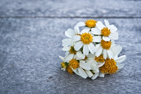 A small bouquet of white daisies on a wooden floor. photo