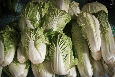 vegetus: lettuce in market