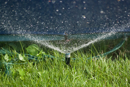 Sprinkler Water photo