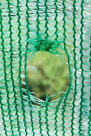 hole Green Stock Photo