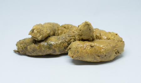 Real Feces On White Background Stock Photo