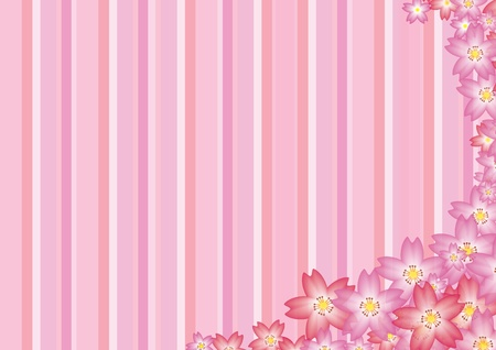Pink Sakura Background photo