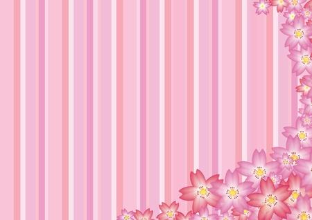 Pink Sakura Background Stock Photo - 12759577