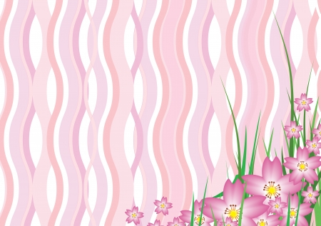 Pink sakura wavy background Vector