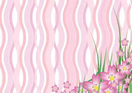 Pink sakura wavy background Vector