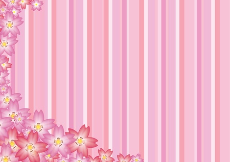 Cherry Blossom Background photo