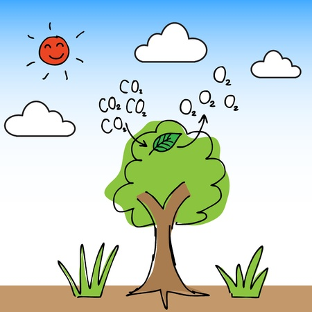 Illustration of hand draw tree change carbon dioxide to oxygen Çizim