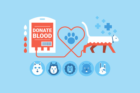 lion dog: Illustration of animal blood donation flat design concept with icons elements