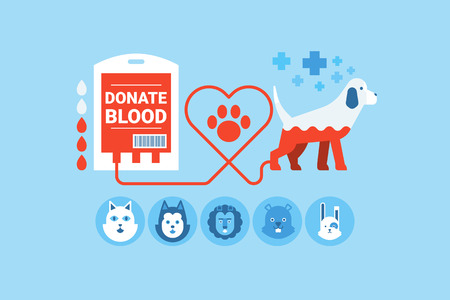 Illustration of dogs blood donation flat design concept with icons elements Vectores