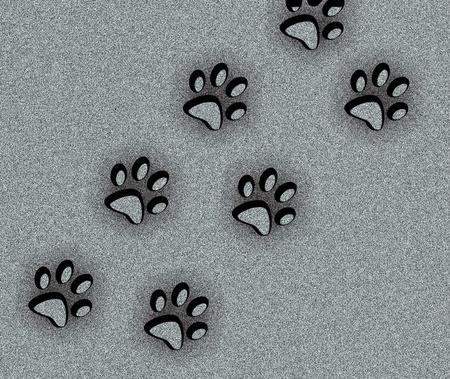 犬歯: 動物の足跡の背景 写真素材