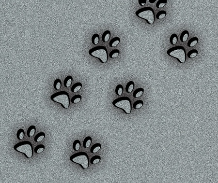 animal tracks: animal footmark background