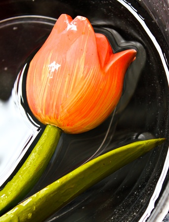 One Copy Tulip in the water photo