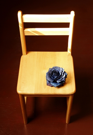 spurious: Spurious black rose on the wooden chair